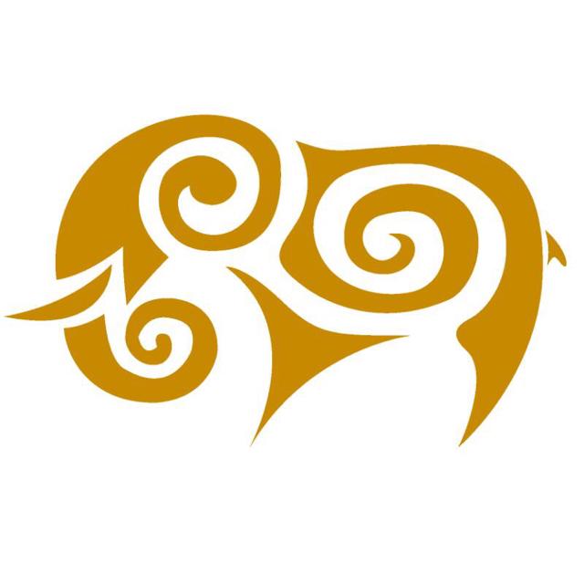 驰象实业logo