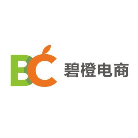 杭州碧橙logo