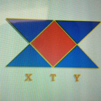 新太亚logo