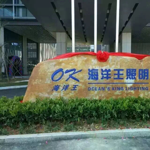 深圳市海洋王照明logo