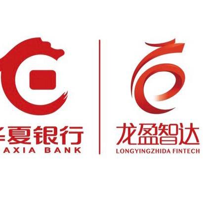龍盈智達logo