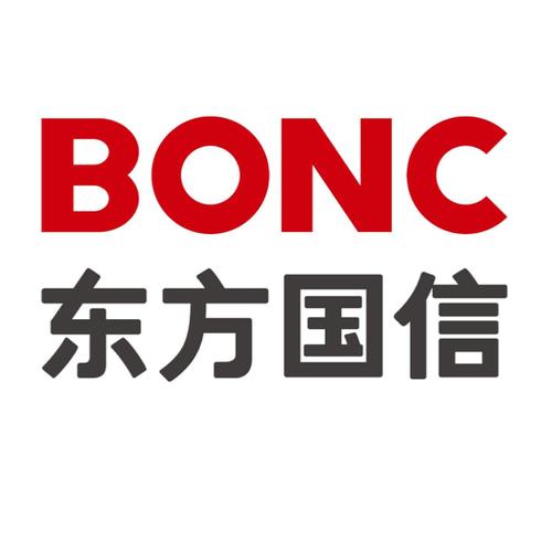 安徽东方国信logo