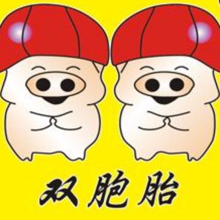 临沂双胞胎logo